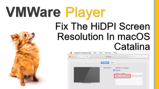 TechTalk - VMWare : How to Fix macOS Catalina Screen Resolution on VMWare